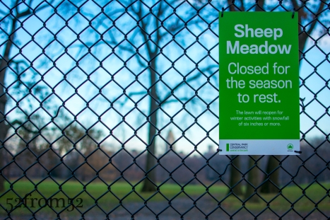 Sheep Meadow Closed!